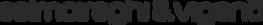 Logo S&V.png