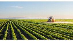 Analiz   Afrika'da Tarım Ekonomisi