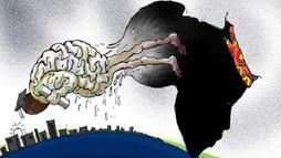 Analiz | Afrika'da Beyin Göçü