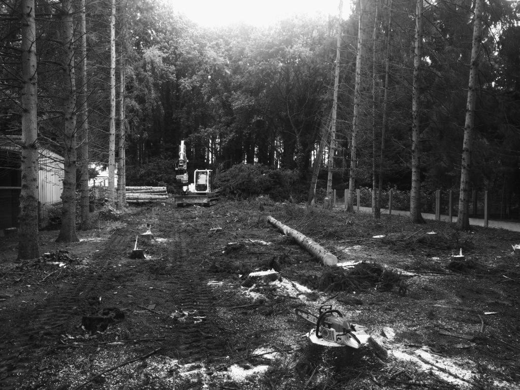 ontbossing bw