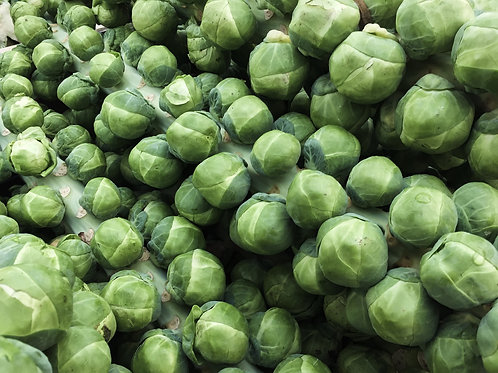 Brussel Sprouts - Dagan