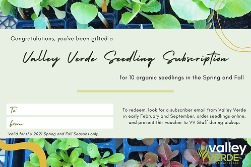 Gift a Subscription - 10 Seedlings/Season