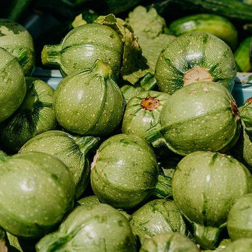 Summer Squash - Zucchini Round