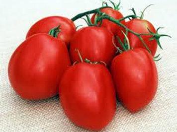 Tomato - Amish Paste (Determinate)