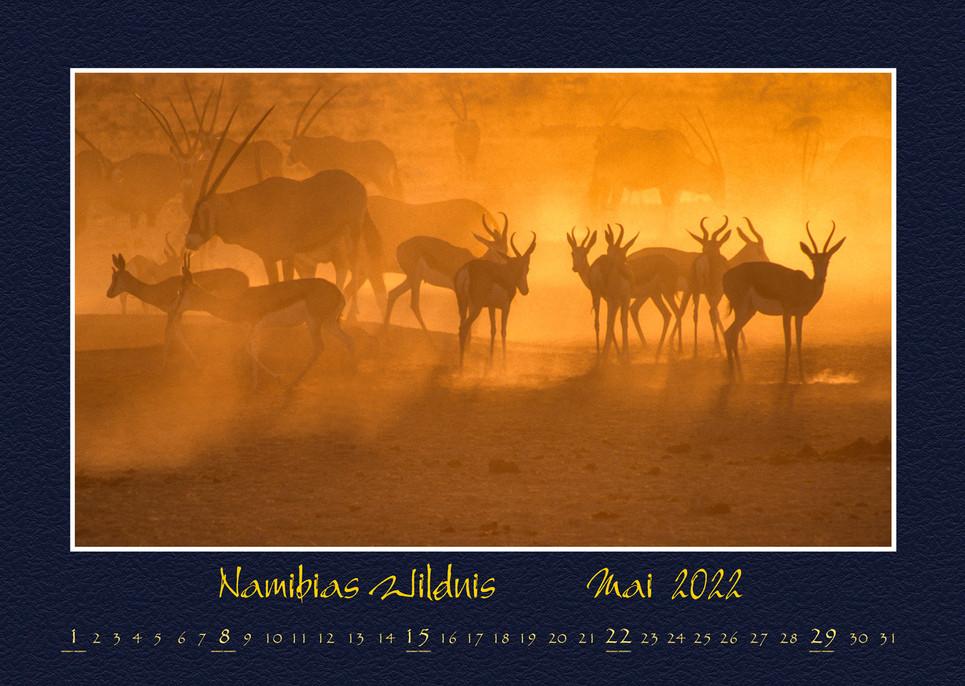 Namibias-Wildnis2022_06.jpg