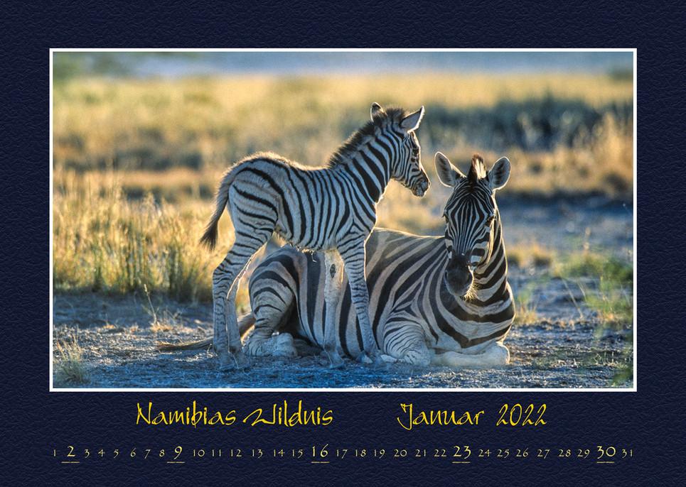 Namibias-Wildnis2022_02.jpg