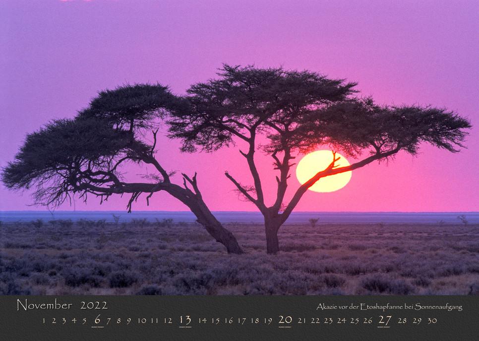 AfrikanischesLicht2022_12.jpg