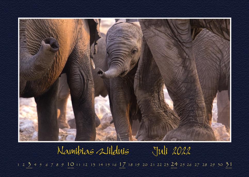 Namibias-Wildnis2022_08.jpg