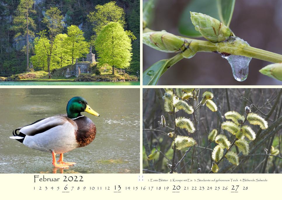 Natur_03.jpg