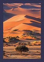 Enchanting_dunes.jpg