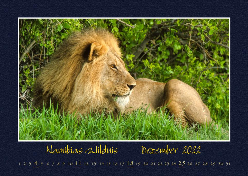 Namibias-Wildnis2022_13.jpg