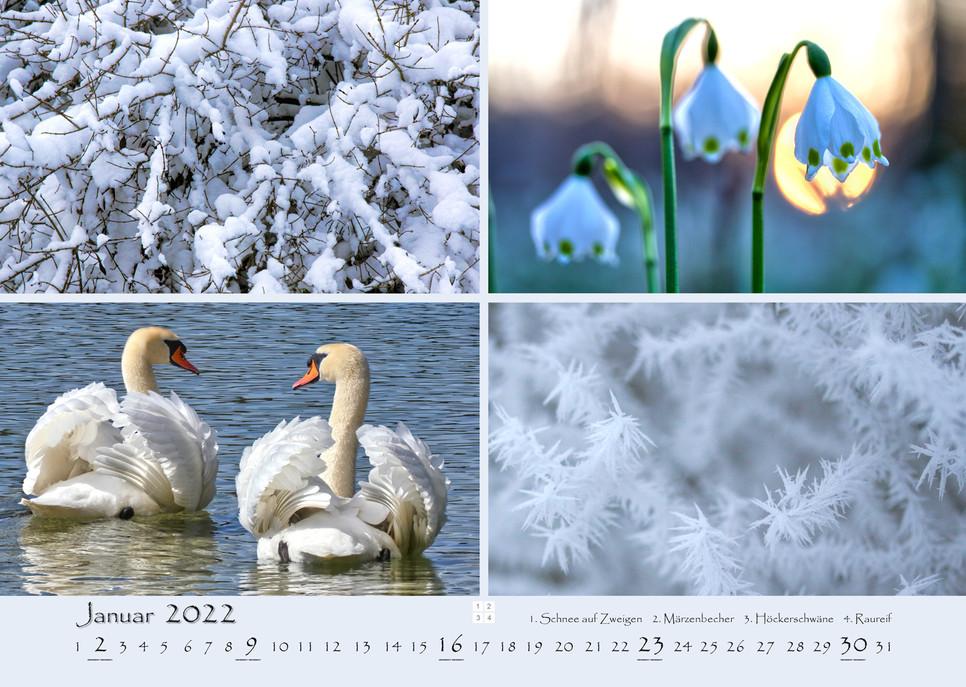 Natur_02.jpg