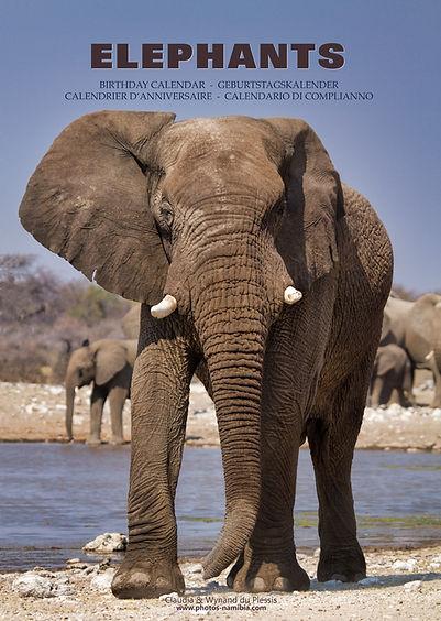 BCAL_A3_Elephants_01.jpg