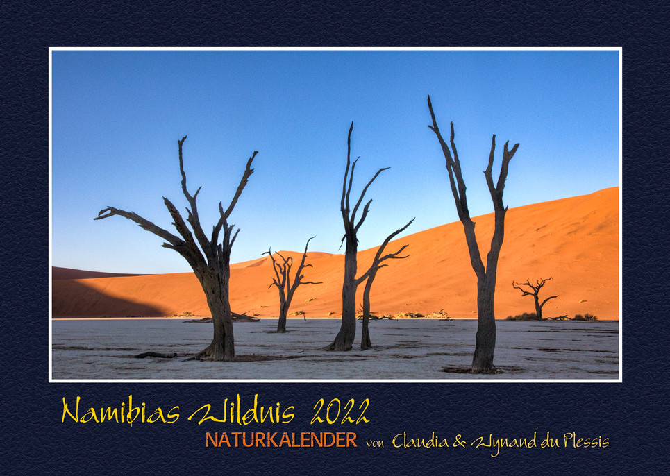 Namibias-Wildnis2022_01.jpg