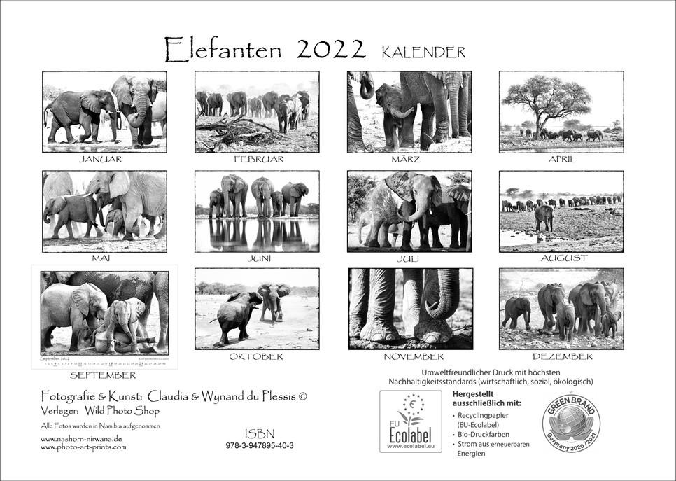Elefanten_14.jpg