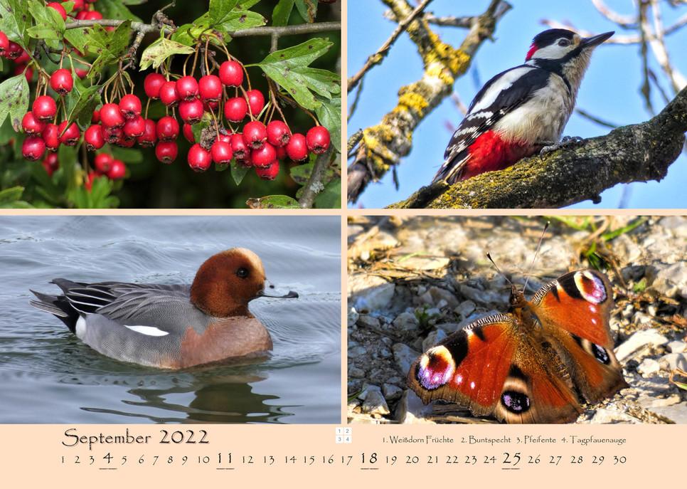 Natur_10.jpg