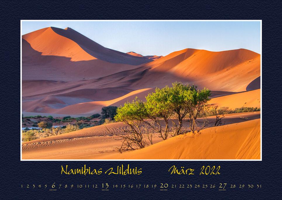 Namibias-Wildnis2022_04.jpg