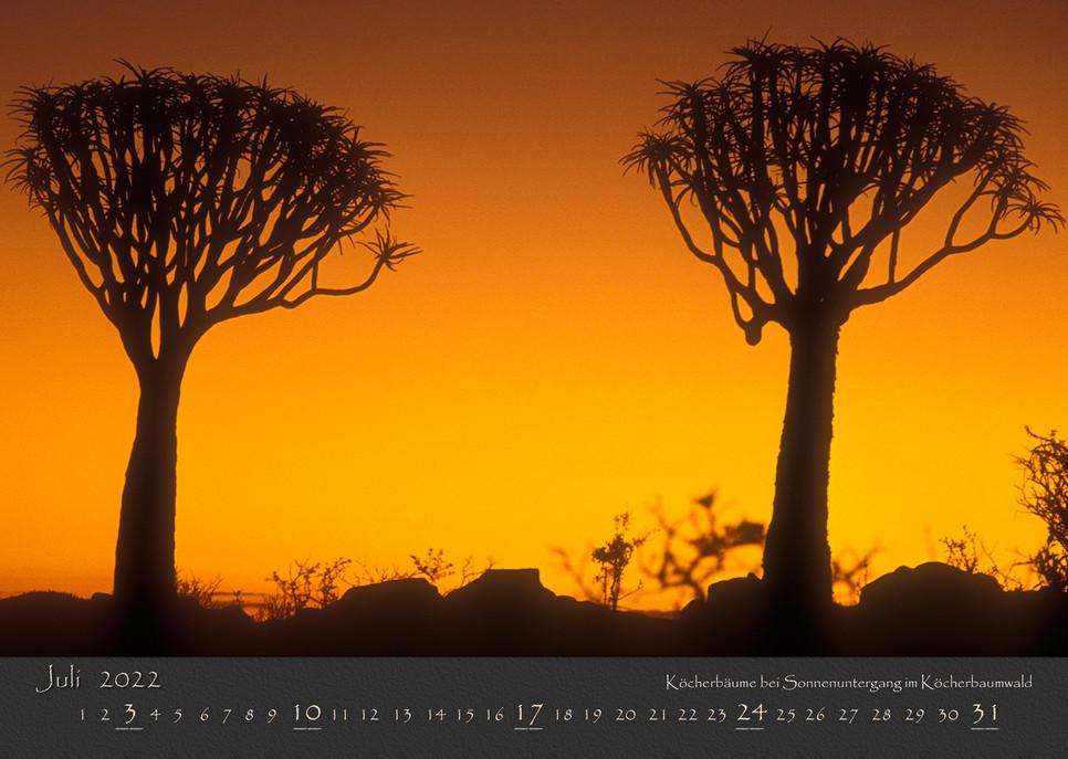 AfrikanischesLicht2022_08.jpg