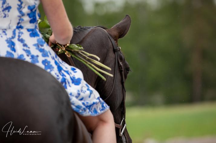 Ylioppilaskuvaus hevosen kanssa
