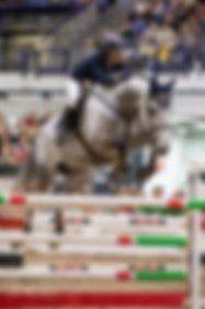 horsefair-87.jpg