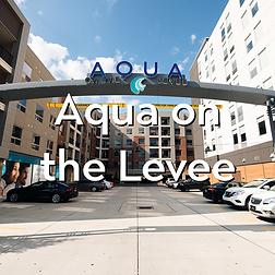 Aqua-on-the-levee.png