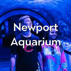 Newport-Aquarium.png
