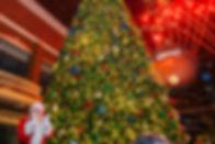 11-23-19_LUTL -39_websize.jpg