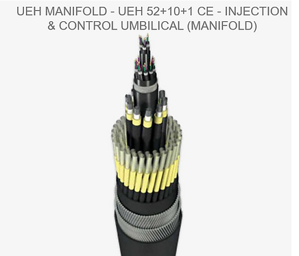 Injection & Control Umbilical (Manifold)