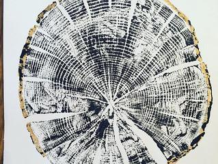 Tree Ring Prints