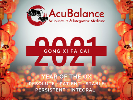 Gong Xi Fa Cai! Welcoming the Year of the Metal Ox