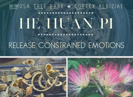 He Huan Pi: Releasing Constrained Emotions