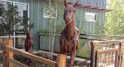 PPSW Horse