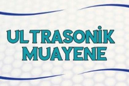 Ultrasonik Metot Seviye 1