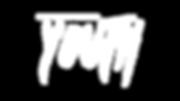 Youth-Logo_White on Transparent BG.png