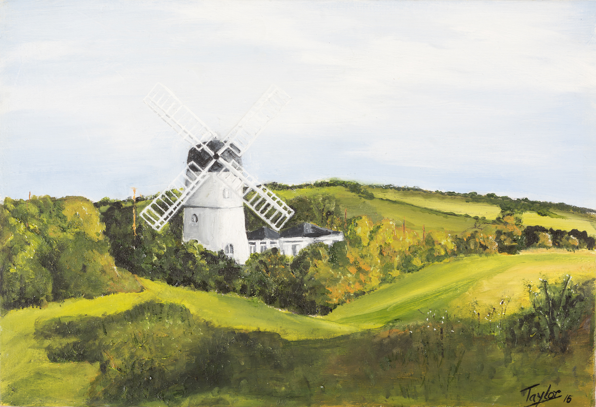 Green Ridge Windmill - SOLD