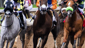 The value of avoiding verbal contracts in the horse racing industry