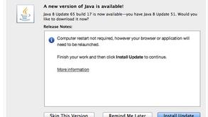 USPTO and Java v8 update 65 build 17