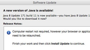 USPTO and Java 8 update 171 build 11