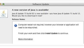 USPTO and Java v8 update 73 build 02