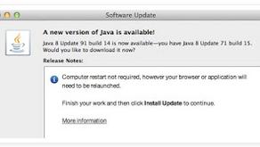 USPTO and Java v8 update 91 build 14