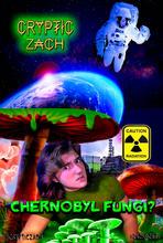 Chernobyl mushrooms igtv.jpg