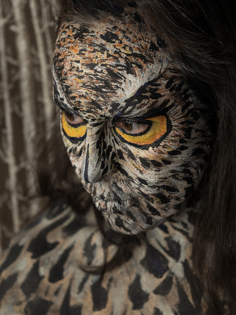 Zoomorphic #31 (Great Horned Owl), 2019