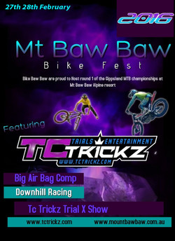 mt baw baw poster