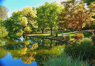 UC Davis Arburetum.jpg