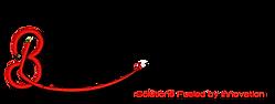 networking bridge logo-01_edited_edited.png