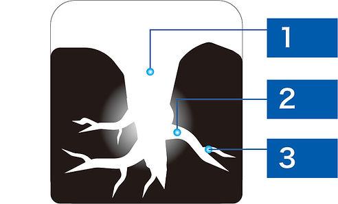 活性碳圖示.jpg
