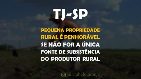 TJ-SP – Pequena propriedade rural é penhorável se não for a única fonte de subsistência do produtor