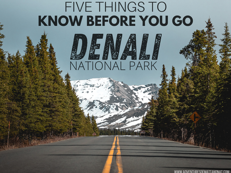 Denali National Park - 5 Things to Know Before You Go