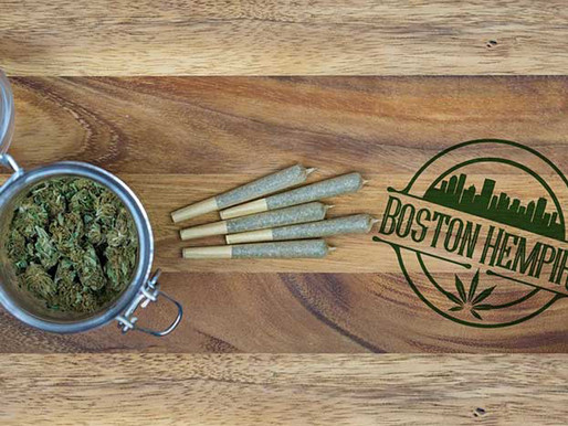 Boston Hempire - It All Starts With The Flower
