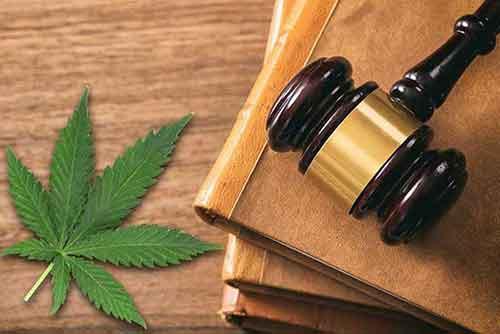 The 2018 Farm and CBD Legalization